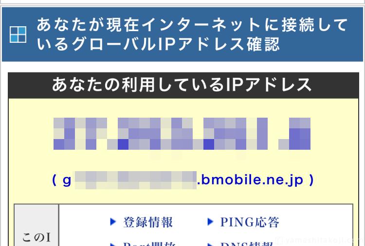 IPアドレスチェックでbmobile回線になっている